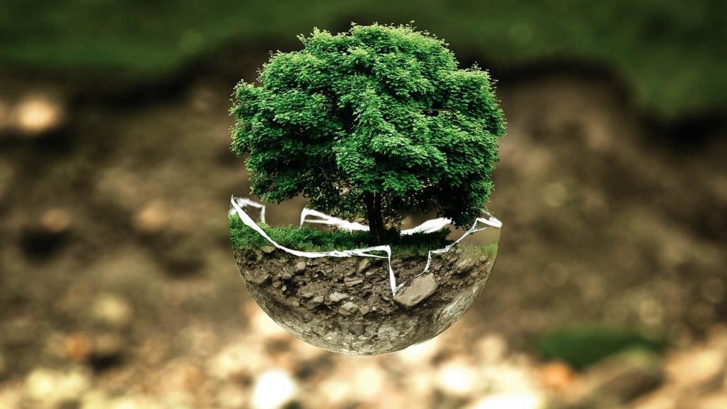 umweltschutz, Familienaufstellung