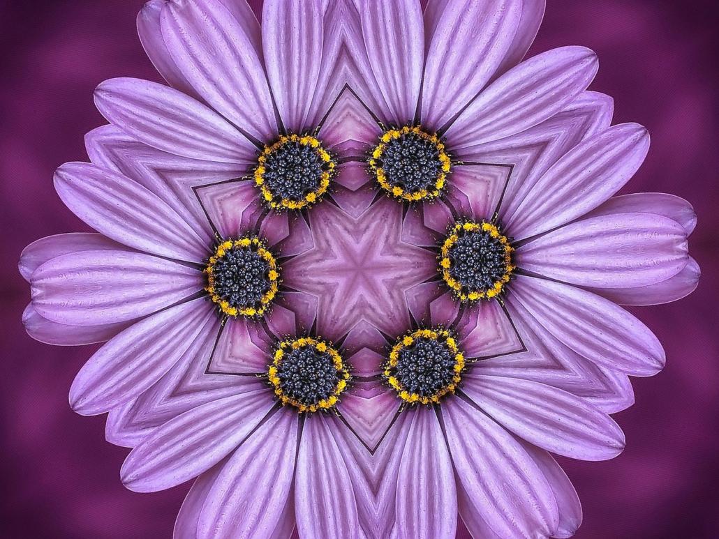 Kreativ mit Mandala, Symbolik der Blumen
